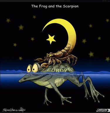 FrogScorpion