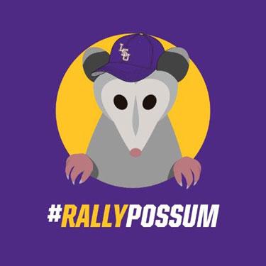 RallyPossum
