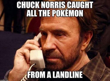 ChuckNorrisPokemon