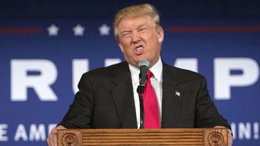TrumpCrazy